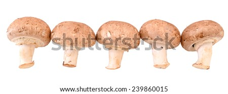 champignon mushrooms - stock photo