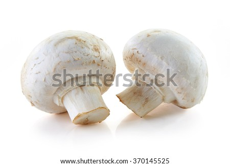 champignon mushrooms isolated on white background - stock photo