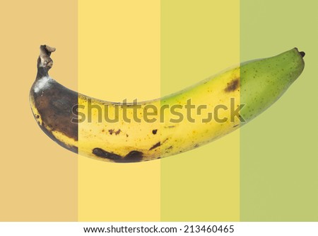 Changes of banana fruit on colour background - stock photo