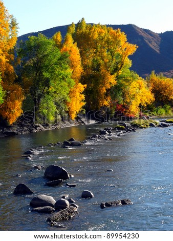 Changing leaves along a river in the Colorado Rocky Mountains - stock photo