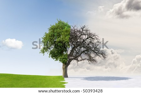 Changing seasons from summer to winter or vice-versa - stock photo