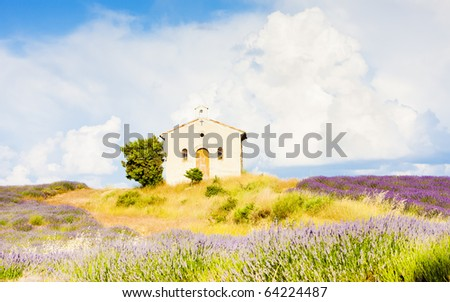 chapel with lavender field, Plateau de Valensole, Provence, France - stock photo
