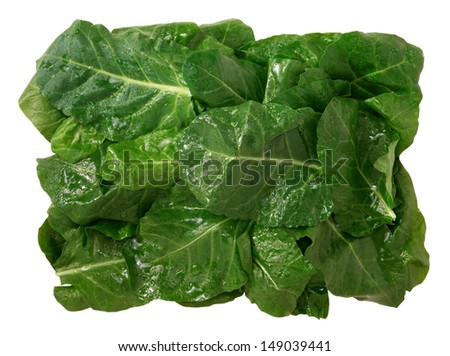 Chard leaves on white background - stock photo