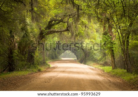 Charleston SC Dirt Road Forest Botany Bay Plantation Spanish Moss Edisto Island Deep South Live Oak Trees - stock photo