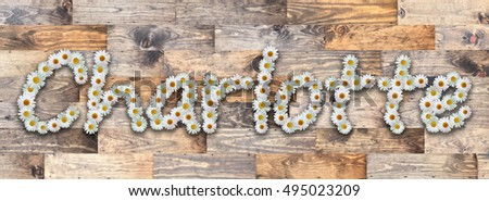 Charlotte Name in Daisy Letters Reclaimed Wood Background - Charlotte Name Image Stock Images, Royalty-Free Images & Vectors