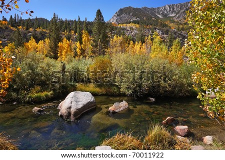 Charming creek in the mountains among the colorful yellow and orange bushes and trees - stock photo
