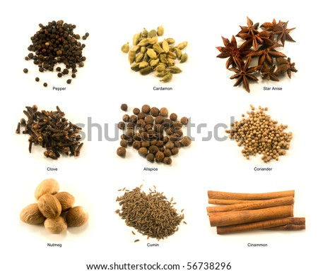 Chart of nine common spices with name under each pile - stock photo