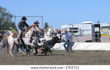 Chasing the Steer - stock photo