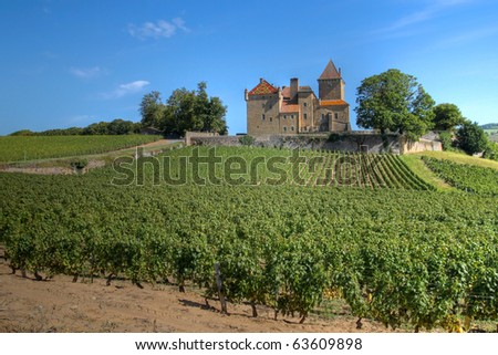 Chateau de Pierreclos among vineyards in Burgundy, France - stock photo