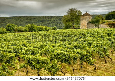 Chateau with vineyards, Burgundy, France - stock photo