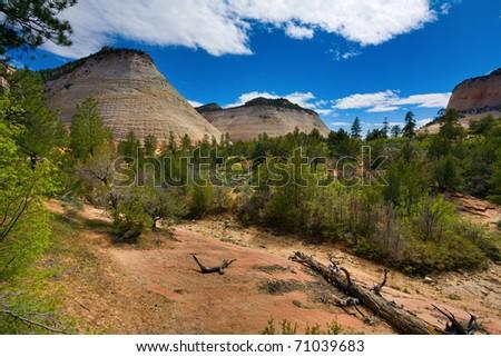 Checkerboard Mesa in Zion National Park - stock photo