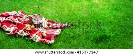 Checkered Plaid Picnic Apples Basket Fruit Green Grass Summer Time Rest Background Design Web Concept Long Format - stock photo