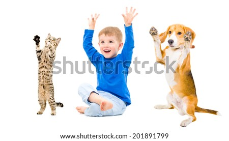 Cheerful boy, dog and cat  together - stock photo