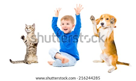 Cheerful boy, dog and cat  together with hands raised - stock photo