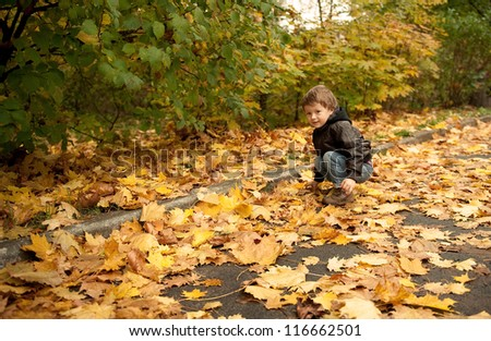 Cheerful boy walking on yellow foliage in the park.