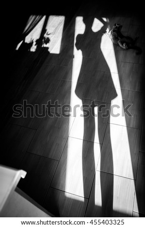 Cheerful girl with a cat - shadow on house floor - stock photo