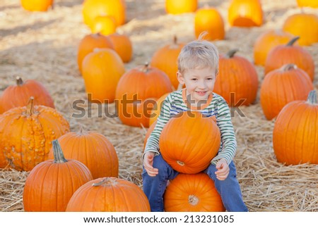cheerful little boy at pumpkin patch, fall time
