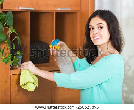 Cheerful young woman removes dust from furniture cleanser - stock photo