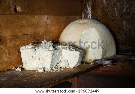 Cheese as a background. Healthy and tasty food - stock photo