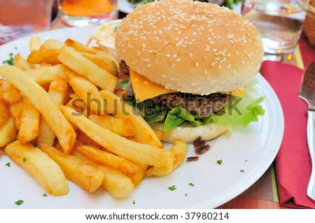 Cheese burger - American cheese burger with fries
