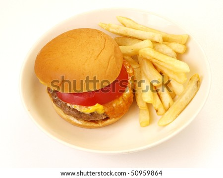 cheese burger and fries in plate - stock photo