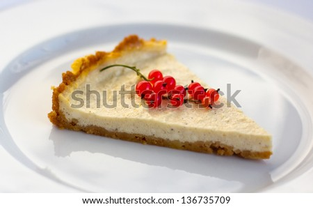 Cheese cake decorated with red currant