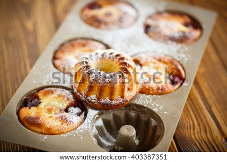 cheese cakes with fruit filling  - stock photo