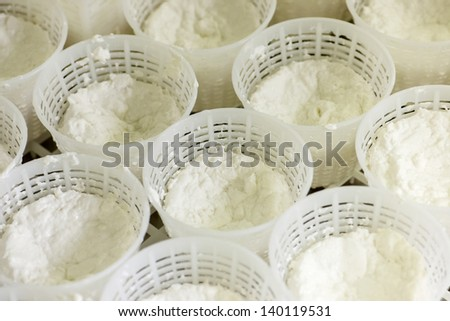 Cheese goat factory - stock photo