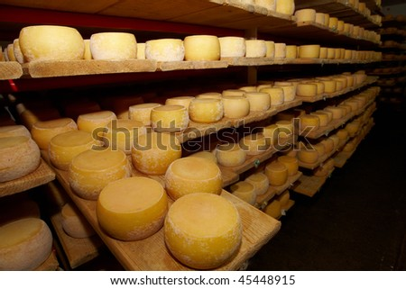 cheese in a cheese dairy - stock photo