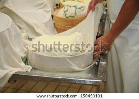 cheese production and storage of dairy heart fassa cow's milk - stock photo