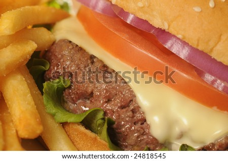 Cheeseburger & French Fries Close-Up - stock photo