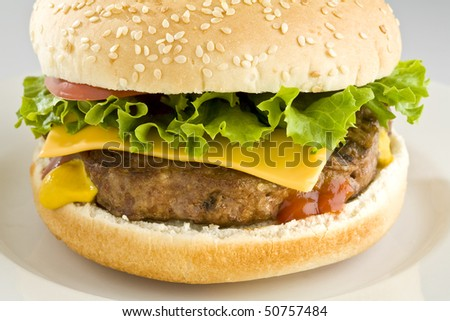 Cheeseburger with lettuce and tomato on white plate