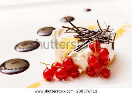 Cheesecake with chocolate sauce - stock photo
