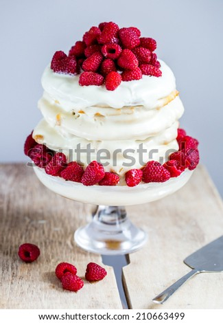 Cheesecake with whipped cream and raspberry