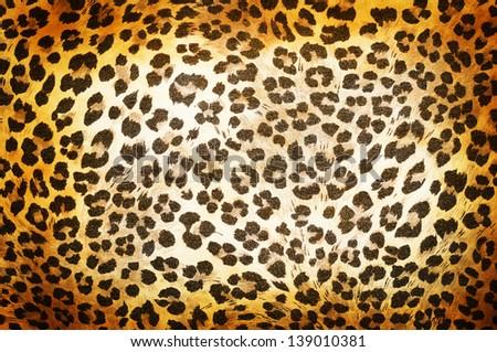 Cheetah pattern - stock photo