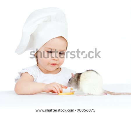 Chef girl and domestic rat eating healthy food together. Isolated on white background. - stock photo