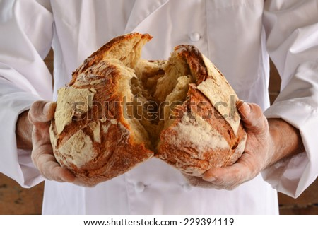 Chef holding fresh bread. Baker holding a fresh bread just taken out of the oven. - stock photo