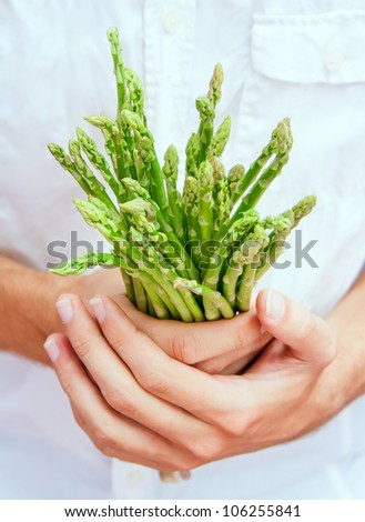 Chef holds a bunch of asparagus gentle in his hands - stock photo