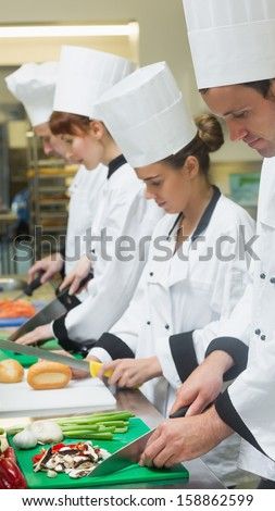 Chefs standing in a row cutting vegetables in a kitchen