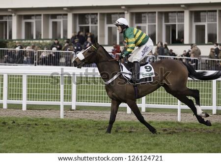CHELTENHAM, GLOUCS-JANUARY 26: Jockey A P McCoy takes Nadiya de La Vega out to the third race at Festival Trials Day, Cheltenham Racecourse, Cheltenham UK on Jan 26, 2013. - stock photo