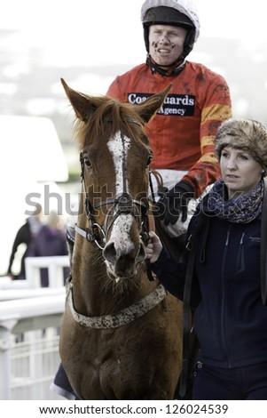 CHELTENHAM, GLOUCS-JANUARY 26: Jockey Joshua Moore returns with Knight of Pleasure from the first race at Festival Trials Day, Cheltenham Racecourse, Cheltenham UK on Jan 26, 2013. - stock photo
