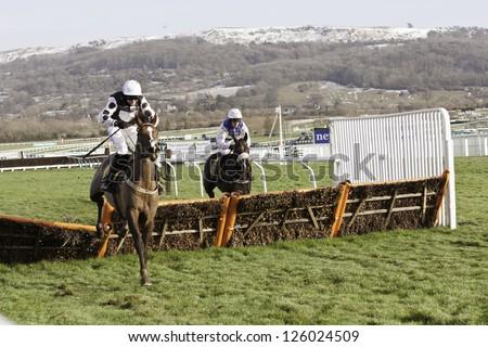 CHELTENHAM, GLOUCS-JANUARY 26: Jockey Marc Goldstein takes Feb Thirtyfirst over hurdles in the first race at Festival Trials Day, Cheltenham Racecourse, Cheltenham UK on Jan 26, 2013. - stock photo