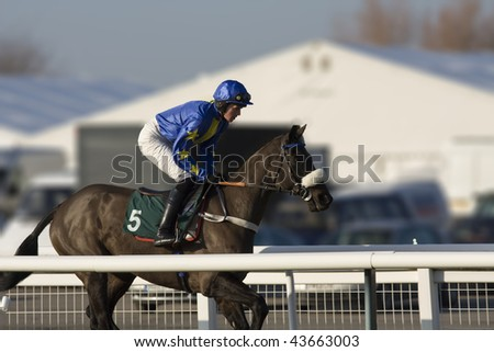 CHELTENHAM, GLOUCS: Jockey Jason Maguire takes Empty Sky to the start in the second race at Cheltenham Racecourse January 1, 2010 in Cheltenham, Gloucestershire