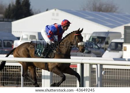 CHELTENHAM, GLOUCS: jockey Seamus Durack rides out on Alesandro Mantegna to come third in the first race at Cheltenham Racecourse, UK, January 1 2010, Cheltenham, Gloucestershire - stock photo