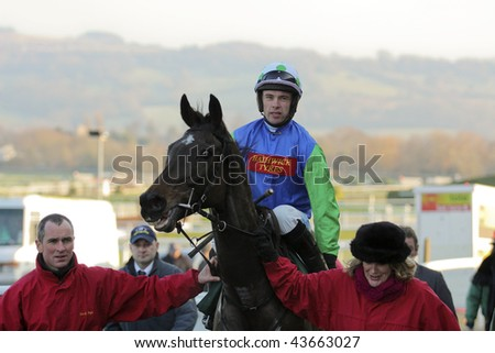 CHELTENHAM, GLOUCS: Jockey Timmy Murphy takes first place on Seven is My Number in the third race at Cheltenham Racecourse  January 1, 2010 in Cheltenham, Gloucestershire - stock photo