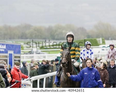 """CHELTENHAM, GLOUCS; NOV 14: jockey A P """"Tony"""" McCoy rides """"don't push it"""" back from the third race at Cheltenham Racecourse, UK, November 14, 2009 in Cheltenham, Gloucs - stock photo"""