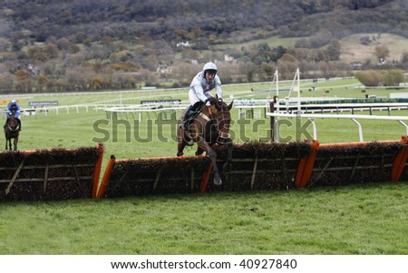 CHELTENHAM, GLOUCS; NOV 14: Jockey Steven Gagin rides Royal Max in the first race at Cheltenham Racecourse, Uk, November 14 2009 in Cheltenham, Gloucs - stock photo