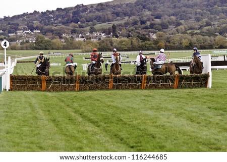 CHELTENHAM, GLOUCS, OCT 20 2012, jockeys take their horses to examine the first fence at the novice hurdle, cheltenham racecourse, cheltenham uk Oct 20 2012 - stock photo