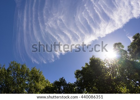 Chem Trails Angels Wing Sunlight Clouds Blue Sky