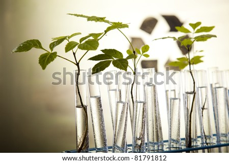 Chemical laboratory glassware equipment, ecology - stock photo